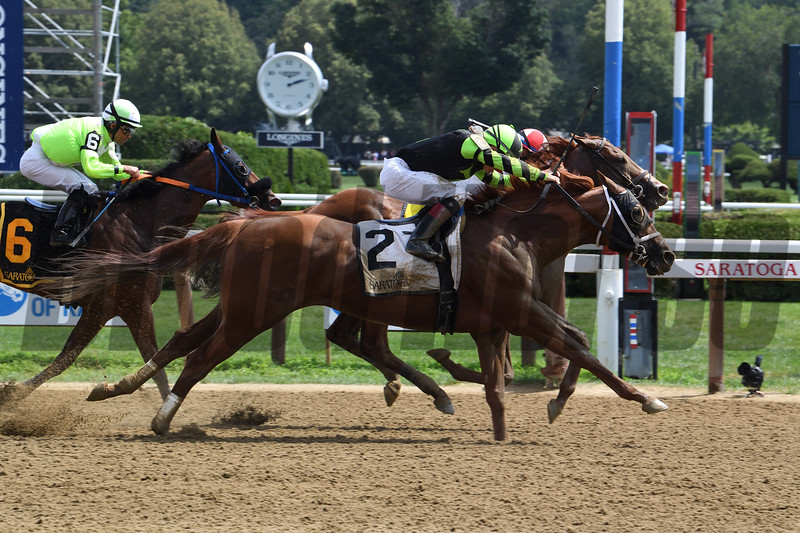 Celtic Chaos wins the 2019 John Morrissey Stakes at Saratoga. Photo: Coglianese Photos