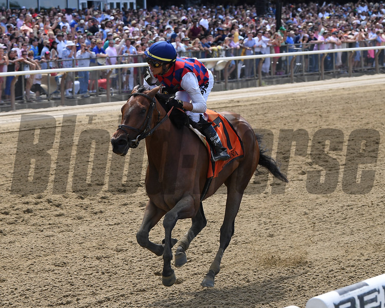 Guarana wins the 2019 Acorn Stakes at Belmont Park<br /> Coglianese Photos/Chelsea Durand