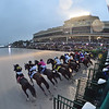 City of Light wins the 2019 Pegasus World Cup at Gulfstream Park<br /> Coglianese Photos/Adam Mooshian