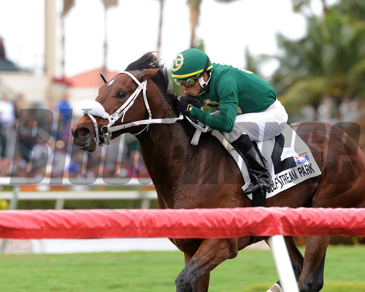 Speed Franco wins the 2017 Pulpit Stakes<br /> Coglianese Photos/Kenny Martin