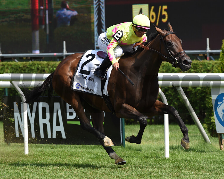 Fools Gold wins the 2019 Waya Stakes at Saratoga. Photo: Coglianese Photos/Janet Garaguso