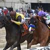 Nicodemus wins the 2019 Westchester Stakes