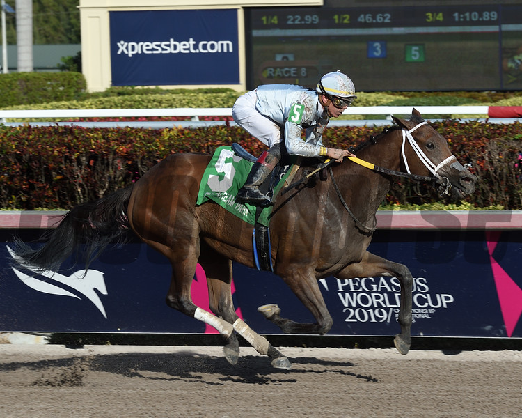 Misschief Maas wins the 2019 Eos Stakes at Gulfstream Park<br /> Coglianese Photos/Derbe Glass