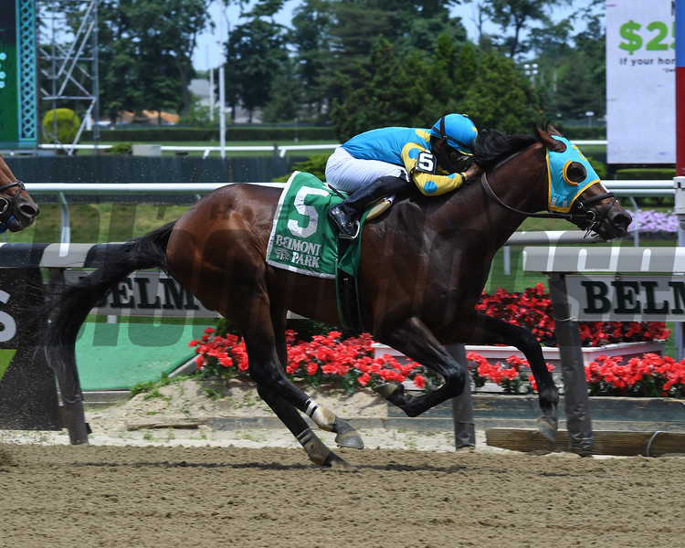 Majid wins the 2019 Easy Goer at Belmont Park<br /> Coglianese Photos/Derbe Glass