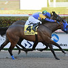 Jeltrin wins the 2019 Davona Dale Stakes at Gulfstream Park<br /> Coglianese Photos/Leslie Martin