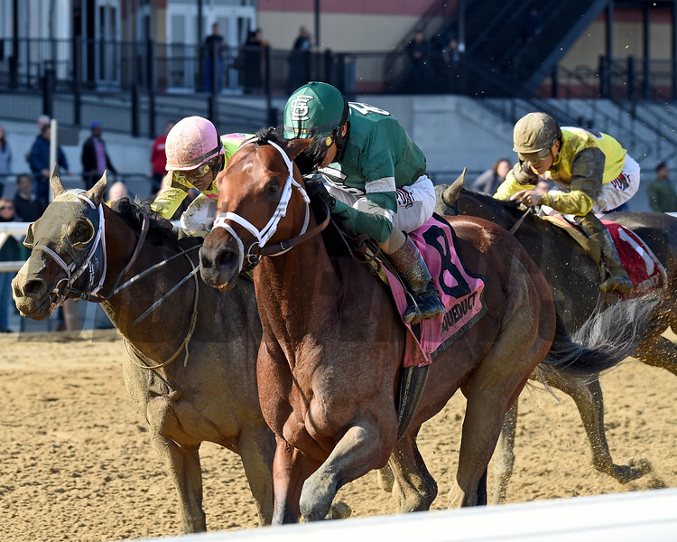 Life's a Parlay wins the 2019 Excelsior Stakes at Aqueduct.<br /> Coglianese Photos/Chelsea Durand
