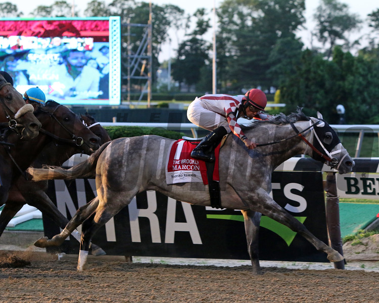 Marconi with Jose Lezcano win the 131st Running of the Brooklyn Invitational (GII) at Belmont Park on June 8, 2019. Photo By: Chad B. Harmon