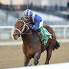 Haikal wins the 2019 Gotham Stakes at Aqueduct<br /> Coglianese Photos/Chelsea Durand