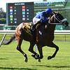 Rinaldi wins the New York Stallion Stakes Sunday, June 23, 2019 at Belmont Park. Photo: Coglianese Photos