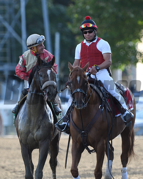Preservationist wins the 2019 Woodward Stakes at Saratoga. Photo: Coglianese Photos/Elsa Lorieul