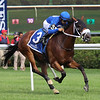 Rinaldi wins the 2019 New York Stallion Stakes at Saratoga<br /> Coglianese Photos/Janet Garaguso