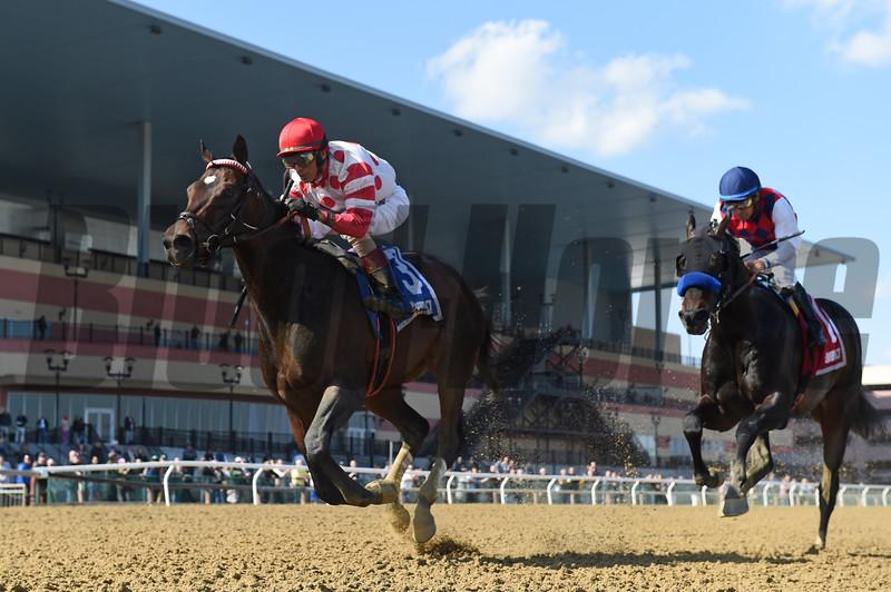Mind Control wins 2019 Bay Shore Stakes at Aqueduct. Photo: Coglianese Photos