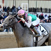 Tacitus wins the 2019 Wood Memorial<br /> Coglianese Photos/Chelsea Durand