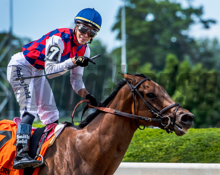 Guarana with jockey Jose Ortiz aboard wins the 89th running of The Acorn Saturday June 8, 2019 at Belmont Park in Elmont, N.Y.  Photo by Skip Dickstein
