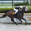 Fallen Leaf - AOC, Gulfstream Park, August 29, 2019<br /> Coglianese Photos/Lauren King