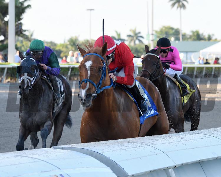 Gladiator King wins 2019 Hutcheson Stakes at Gulfstream Park. Photo: Coglianese Photos/Derbe Glass