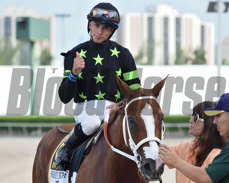 Stormy Embrace wins the Princess Rooney Stakes Saturday, June 29, 2019 at Gulfstream Park. Photo: Coglianese Photos/Ryan Thompson