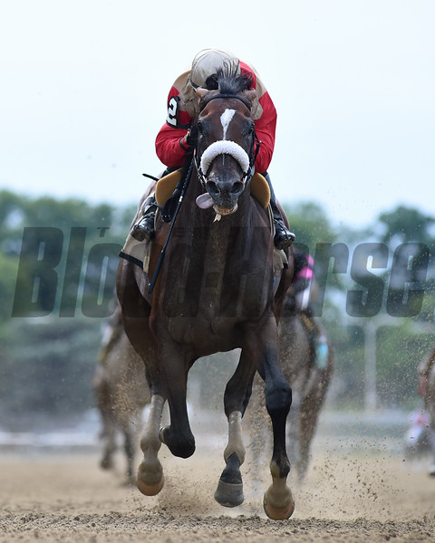 Preservationist wins the Suburban Stakes Saturday, July 6, 2019 at Belmont Park. Photo: Coglianese Photos