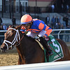 Always Shopping wins the 2019 Gazelle Stakes at Aqueduct<br /> Coglianese Photos/Chelsea Durand