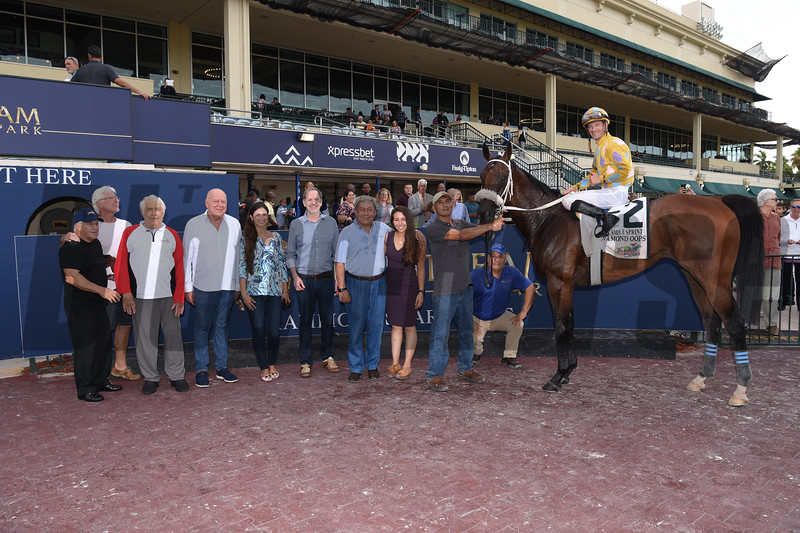 Diamond Oops wins the Smile Sprint Stakes Saturday, June 29, 2019 at Gulfstream Park. Photo: Coglianese Photos