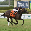 Little Maria - Maiden Win, Gulfstream Park, August 24, 2019<br /> Coglianese Photos/Lauren King