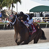 Recruiting Ready wins the 2019 Gulfstream Park Sprint<br /> Coglianese Photos/Derbe Glass