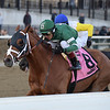 Vino Rosso wins the 2019 Stymie at Aqueduct<br /> Coglianese Photos/Joe Labozzetta