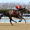 Not About the Nail wins the 2019 Belle Gallantey Stakes at Aqueduct<br /> Coglianese Photos/Susie Raisher
