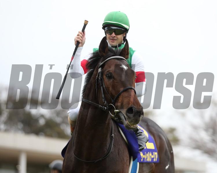 Saturnalia wins the 2019 Satsuki Sho at Nakayama Racecourse. Photo: Masakazu Takahashi