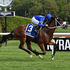 Rinaldi wins the New York Stallion Stakes Wednesday, July 24, 2019 at Saratoga. Photo: Coglianese Photos