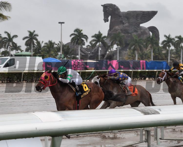 Aztec Sense wins the 2019 Fred W. Hooper Stakes at Gulfstream Park<br /> Coglianese Photos/Susie Raisher