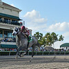 Marconi wins the 2019 Skip Away Stakes at Gulfstream Park<br /> Coglianese Photos