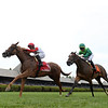 Regal Glory wins the 2019 Lake George Stakes at Saratoga<br /> Coglianese Photos