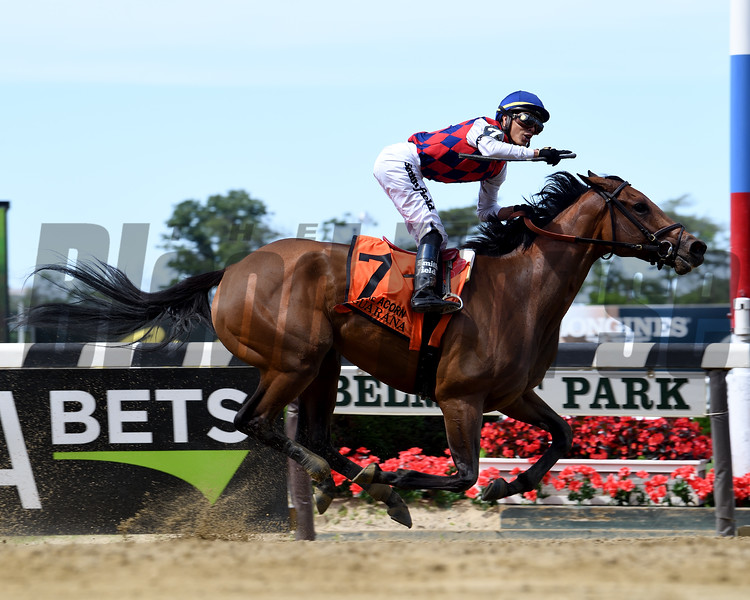 Guarana wins the 2019 Acorn Stakes at Belmont Park<br /> Coglianese Photos/Viola Jasko
