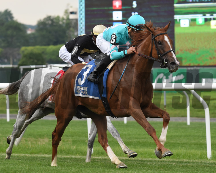 Uni wins the 2019 Perfect Sting Stakes at Belmont Park<br /> Coglianese Photos/Chelsea Durand