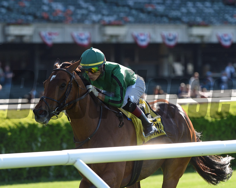 Gucci Factor wins the Kingston Stakes Monday, May 27, 2019 at Belmont Park. Photo: Coglianese Photos/Chelsea Durand