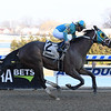 Do Share wins the 2019 Tom Fool at Aqueduct<br /> Coglianese Photos/Susie Raisher