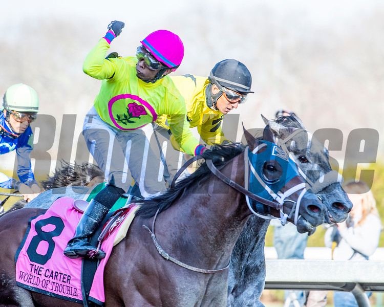 World of Trouble wins the Carter Handicap at Aqueduct Saturday, April 6, 2019. Photo: Skip Dickstein