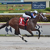 Chance It wins the 2019 FTBOA Florida Sire Dr. Fager Stakes at Gulfstream Park<br /> Coglianese Photos/Lauren King