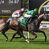 Homerique wins the 2019 Beaugay Stakes at Belmont Park<br /> Coglianese Photos/Robert Mauhar