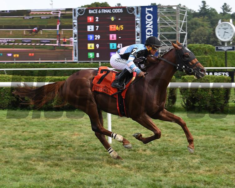Archidust wins the 2019 Mahony Stakes at Saratoga. Photo: Coglianese Photos