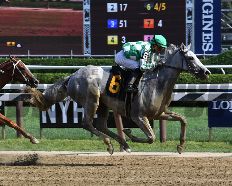 Mrs. Danvers - Maiden Win, Saratoga, August 18, 2019<br /> Coglianese Photos