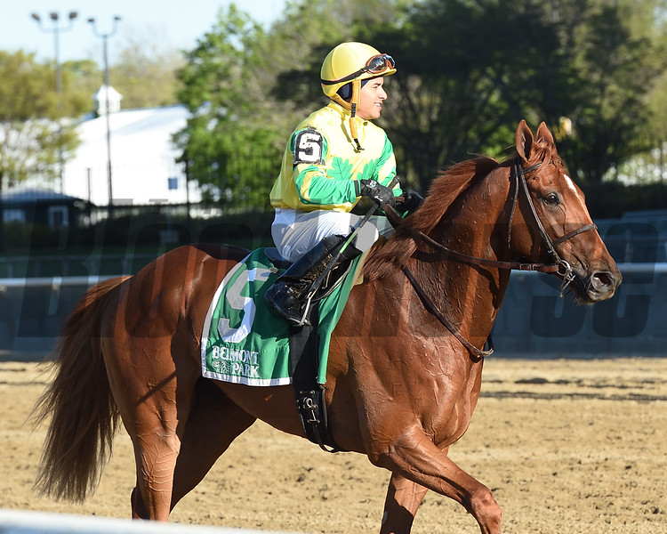 Therapist wins the Elusive Quality Stakes at Saturday, April 27, 2019 at Belmont Park. Coglianese Photos