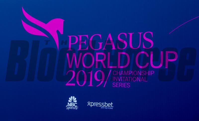 2019 Pegasus World Cup<br /> Joe DiOrio Photo