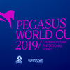 2019 Pegasus World Cup<br /> Joe DiOrio Photo
