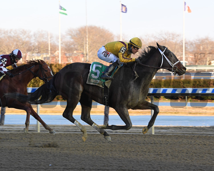 Dawn the Destroyer wins the 2019 Interborough Stakes at Aqueduct<br /> Coglianese Photos/Chelsea Durand