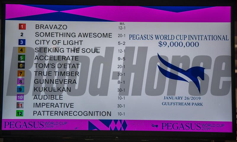 2019 Pegasus World Cup Draw<br /> Joe DiOrio Photo
