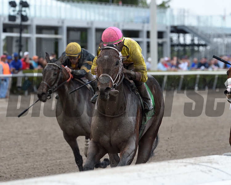 Call Paul wins the Swale Stakes at Gulfstream Park Saturday, February 2, 2019. Photo: Coglianese Photos/Kenny Martin