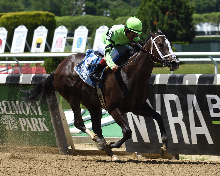 Break Even wins the Jersey Girl Stakes Sunday, June 9, 2019 at Belmont Park. Photo: Coglianese Photos