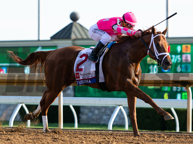 Vekoma wins The Blue Grass Stakes